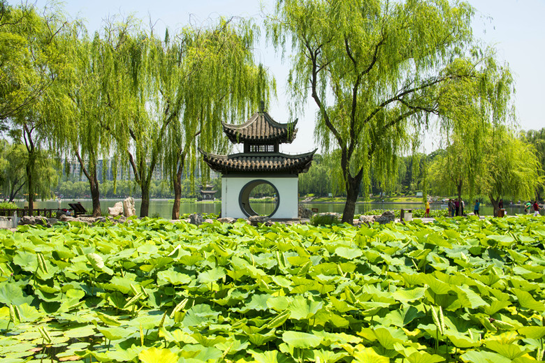 Explore The 10 Best Parks in Beijing tips