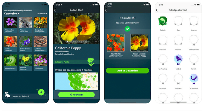 iNaturalist apps