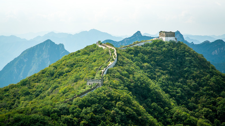 Wildness taking its part on a tower of the China Great Wall