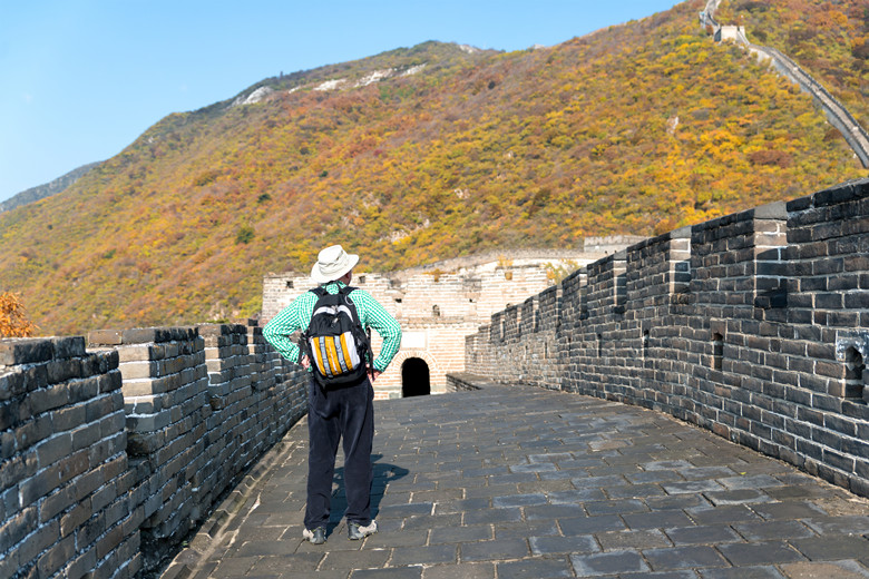 Tourist man from behind looking at view of Great Wall of China at famous Mutianyu tourism attraction during travel vacation in Beijing. Asia autumn holidays.